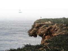 Brodtener Ufer (Paul und Lotte) Tags: cliff germany deutschland bay balticsea edge ufer ostsee kante norddeutschland lübeckerbucht steilkueste brodten brodtenerufer bayoflübeck
