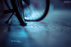 My Flat Tire (Jeff Krol) Tags: street city cinema wet rain bicycle wheel canon eos drops coin mood dof flat bokeh streetphotography 85mm tire rainy raindrops reflective groningen f18 cinematic spikes 2012 ef85mmf18usm 60d canon60d img8213 jeffkrol