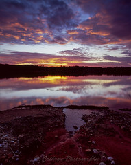 Lanier Reflections (John Cothron) Tags: winter sunset sky usa cloud sun cold color reflection film nature rock mediumformat georgia landscape puddle twilight dusk gainesville scenic sunny erosion lakeshore mf rvp100f lakelanier fujivelvia100f lowwaterlevel hallcounty mamiyarz67proii 6x7format johncothron cothronphotography sekorz50mmf45w wahoocreekpark johncothron 120001508120131