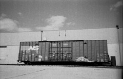 Norfolk Southern (Hogarth Ferguson) Tags: railroad blackandwhite bw film train 35mm graffiti mju kodak infinity olympus stylus boxcar chemicals bw400cn ilfotec ilforddevelopment