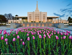 Spring Forth (James Neeley) Tags: building architecture sunrise idaho idahofalls d800 f12 mormontemple ldstemple jamesneeley flickr25