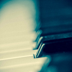 The black key (Pe) Tags: music black macro key dof piano kramer pepijn