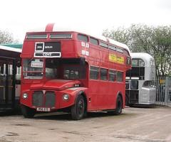 'Roof'master! (thomsonstoursboy25) Tags: bus london coach transport routemaster aec rm110 vlt110 rsk572