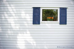 Home Sweet Mobile Home (MoniqueDK) Tags: reflection window tulips shutters caravan mobilehome raam odc ourdailychallenge moniquedk moniquedkoens