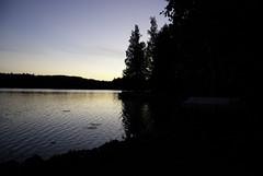 Kun saapuu elokuun yö (PDtuotanto) Tags: finland koivu photo kuva kilpailu kesä yö ranta järvi sarja leppävirta vastavalo elokuu rajala mökkeily lumpeet visitfinland iltä