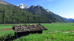 Weite des Pfitschtales (mikiitaly) Tags: italy spring wiesen berge wald südtirol altoadige pfitschtal heustadel pfitsch schindeldach sailsevenseas mygearandme mygearandmepremium mygearandmebronze rememberthatmomentlevel1 rememberthatmomentlevel2 rememberthatmomentlevel3