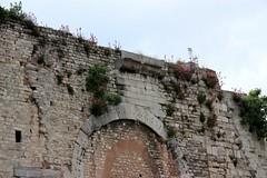 100521085c Istanbul - Yedikule Hisar (galpay) Tags: castle canon turkey eos trkiye istanbul turquie trkei kale turquia 2010 hisar turqua turchia     yedikule  450d  esinti 100521  galpay altnkap