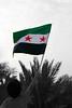 كلنا سوريا (عفاف المعيوف) Tags: syria سوريا حمص سورية الشام شام سوريه حماه الثورة ثورة