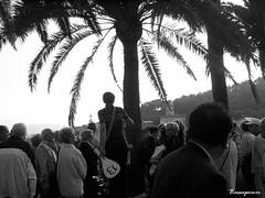 13 (Phil3 (ex Bassapower)) Tags: barcelona voyage park trip travel people blackandwhite spain noiretblanc postcard group palmtrees palmtree gaudi 13 espagne parc barcelone gaudipark parcgaudi bassapower