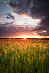 Field at Sunset - Explore (Pete Barnes Photography) Tags: light sunset sky cloud english field sunrise landscape photography evening corn warm britain path walk farm wheat dramatic scene trail wakefield british agriculture footpath westyorkshire woolley