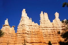 Up and down - Peaks in Bryce Canyon, Utah, USA (Batikart ... handicapped ... sorry for no comments) Tags: travel blue red vacation sky orange usa sun white mountain holiday plant mountains tree slr nature rock america landscape geotagged outdoors utah nationalpark spring ut sandstone day hiking urlaub natur amphitheatre structures peak slide olympus scan erosion formation textures stats views canyonlands scanned million hoodoo layers 1992 geology brycecanyon amerika landschaft sedimentary baum wandern nationalmonument vacanze 2012 frhling diapositive southwestusa brycecanyonnationalpark geologie frhjahr coloradoplateau gipfel upanddown backandforth 100faves 5million viewonblack sedimente batikart 5000000 5millionviews
