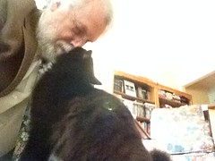 I kissed a cat... (wbaiv) Tags: tuxedo cat nosetonose kittykiss old grayhaired me tweed sportcoat meselfportrate billabbottwilliambenjamin4iv dill dillon ragdoll american longhair blackandwhite white toes whiskers
