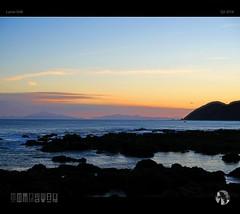 Soar (tomraven) Tags: newzealand mountains seagull gull wellington soar dancinggull tomraven aravenimage q22016