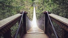 Face your Fears (the snow bunny) Tags: park bridge vancouver bc outdoor britishcolumbia canyon symmetry lynn symbolism vancity northvan