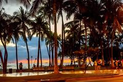 Waikiki Beach at sundown (Victor Wong (sfe-co2)) Tags: city sunset sky people usa sun plant tree green beach public landscape hawaii warm waterfront sundown waikiki oahu outdoor dramatic down tourists palm tropical destination environment honolulu avenue relaxed visitor pleasant kalakaua