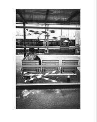 Don't cross the line (tifanm_laurent) Tags: blackandwhite bw paris blancoynegro monochrome station train gare noiretblanc bn bnw homme rer banlieue stadedefrance whiteandblack tlphone abri vitrage monocromatico mobilierurbain blancoenero