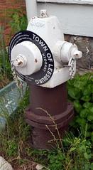 TownOfLeesburgHydrant (T's PL) Tags: hydrant virginia nikon firehydrant ii va di tamron vc leesburgva 16300 f3563 pzd d7000 townofleesburg nikond7000 tamron16300f3563diiivcpzd