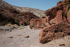 5R6K2629 (ATeshima) Tags: arizona nature havasu