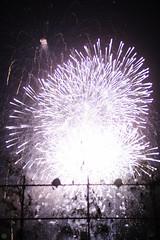 20160604-DS7_5551.jpg (d3_plus) Tags: street sea sky food festival japan port 50mm drive nikon scenery nightshot stage traditional firework  nightview nikkor  shizuoka   touring  izu  50mmf14       fishingport  inatori 50mmf14d   nikkor50mmf14  zoomlense     afnikkor50mmf14 nikon1 50mmf14s d700 nikond700 aiafnikkor50mmf14 nikonaiafnikkor50mmf14