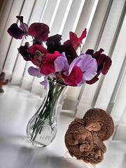 Odd Angle 011 (saxonfenken) Tags: 6695flowers 6695 flowers sweetpeas oddangle vase glass ornament pregamewinner