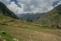 Batakundi (imtiazchaudhry) Tags: trees sky snow mountains clouds landscape fields treeline