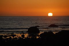 Beautiful sunset last night! (~Ranveig Marie~) Tags: ocean light sunset sea sky orange sun sol beach nature birds norway stone night strand dark evening coast norge nikon rocks europe hiking natur norden norwegen hike norwegian tur shore noruega scandinavia fugler seabirds hav solnedgang fjre jren rogaland fjra norsk sj nordisk norvge h refsnes skandinavisk fottur jrstrand jrstrendene refsnesstranden