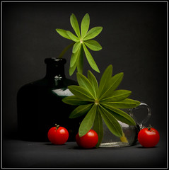 (Ana Lukascuk) Tags: red plant black green glass composition tomato lupin stil natiurmort