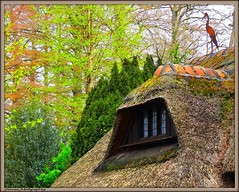 The thatched cottage (jackfre2 (on a trip-voyage-reis-reise)) Tags: park chimney tulips belgium bricks cottage brandt antwerp thatched redtulips timbered thatchedcottage wilrijk wiredfence nachtegalenpark parkdenbrandt mygearandme ringexcellence flickrstruereflection1 rememberthatmomentlevel1