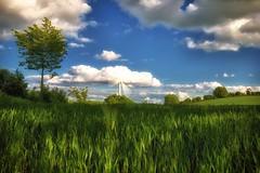 Holstein (dubdream) Tags: sky cloud tree field germany landscape nikon wind hdr windturbine schleswigholstein d800 colorimage dubdream