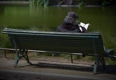 Je brle d'envie de lire un livre (autre cadrage) (Thus0 Petrus) Tags: portrait paris livre banc loupe parcmontsouris