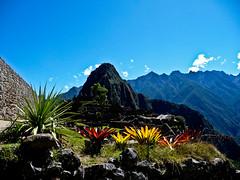 El color del Machu Picchu