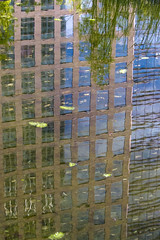 Leaving work (Ian Humes) Tags: reflection london leaves pond offices qtag canonpowershots95