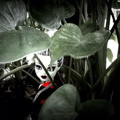 อีแพง อีกรูป สวยๆ หลอนๆ #doll #monsterhigh