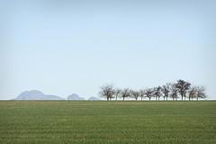 Horison (hassner) Tags: blue trees winter mountain green field canon season eos farm crop wellington westerncape horison 40d