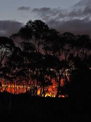 Burning Skies (James Whitlock Photography) Tags: trees sunset newzealand cloud sun walk burning northisland tongariro campsite discoverylodge