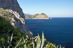 Masse Lubrense coast (Keith now in Wiltshire) Tags: italy sea cliff plant mediterranean water coast headland promontory massa lubrense sky