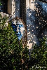 DSC_0127 (antomatto) Tags: centro case ricordi medievale fantasma paesaggio benevento passato vecchio storico vecchia desolazione paese apice casrello paesefantasma diroccate castellomedievale paesevecchio casediroccate apicevecchia storiacentrostorico