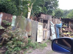 Corrugated metal and scrap wood (Nick Sherman) Tags: bluemountains jamaica roadside