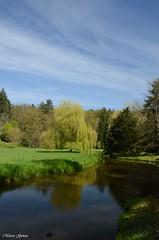 Pruhonicky Park - Czech Republic (m.genca) Tags: park parco green nikon europe day czech prague praha praga czechrepublic acqua wather 2016 d7000 pruhonicky