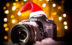 10 Best Cameras for Christmas Gifts of 2015 (mewaqascheema) Tags: christmas camera holiday canon nikon gifts