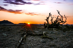 Sunset at Le Mirage (Marc Heurtaut) Tags: africa sunset composition lumix dawn panasonic namibia sunflare deadtrees lx100 colorsofafrica cloudsatdawn