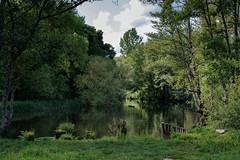 _F0A9418-Editar.jpg (Kico Lopez) Tags: rio spain galicia lugo mio
