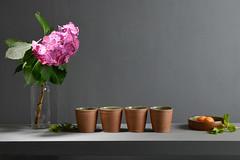 Tea-Bowl-green-brown-020 (cdkceramic) Tags: brown green ceramic teabowl    cdkceramic