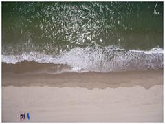 To Bathe or To Sunbathe? (Nkosi868) Tags: sunbathe aerial surf beach sand water ocean sea wave waves shore shoreline couple green blue venicebeach marinadelrey uav drone quadcopter finest fineartphotography gradient brown seascape dji landscape dogwood dogwood52