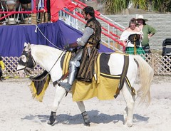 Knight on horseback 5970 (Tangled Bank) Tags: show people horse man beach festival florida performance competition fair knight match faire joust renaissance horseback jousting deerfiled