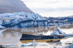 IcelandDay7-9906 (wanderingYew2 (thanks for 3M+ views!)) Tags: reflection iceland nationalpark iceberg vatnajökull glaciallagoon vatnajökullglacier svínafellsjökull svínafellsjökullglacier vatnajökulsþjóðgarður vatnajökullnationalpark fujixpro2