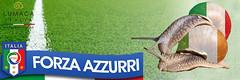 europei italia 2016 lumaca (lumacaitalia) Tags: italia soccer snail forza lumaca escargot calcio vendita lumache azzurri europei