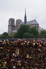 Pont des Amoureux 2015 (mailyse.bellanger) Tags: paris cadenas notredame full pont amoureux