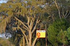 sunbeamsign2 (FAIRFIELDFAMILY) Tags: ocean old family trees gay boy sky jason man flower tree beach sc nature water grass sign st vintage river carson children bread island tin living store moss oak bush natural brothers antique live grant south low country salt young michelle southern azelea spanish coastal taylor carolina seafood myrtle marsh helena oaks beaufort sunbeam lowcountry ridgeland batesburg