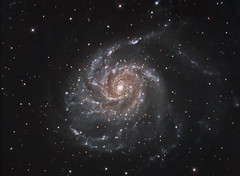 M101 The Pinwheel Galaxy in LRGB (Terry Hancock www.downunderobservatory.com) Tags: camera sky color monochrome wheel night stars photography mono major pier backyard fotografie photos space ngc shed science images astro 101 observatory telescope filter galaxy astronomy imaging pinwheel messier ccd universe cosmos technologies ursa paramount luminance the teleskop astronomie byo deepsky 5457 starlightxpress flattener astrotech Astrometrydotnet:status=solved qhy5 Astrometrydotnet:version=14400 mks4000 qhy9m gt110s 10f8ritcheychrtienastrographat2field Astrometrydotnet:id=alpha20120348172059